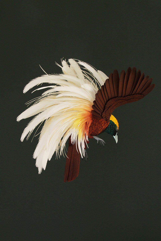 Extraordinary Bird Paper Cut Sculptures By Colombian Artist And Designer Diana Beltran Herrera 3