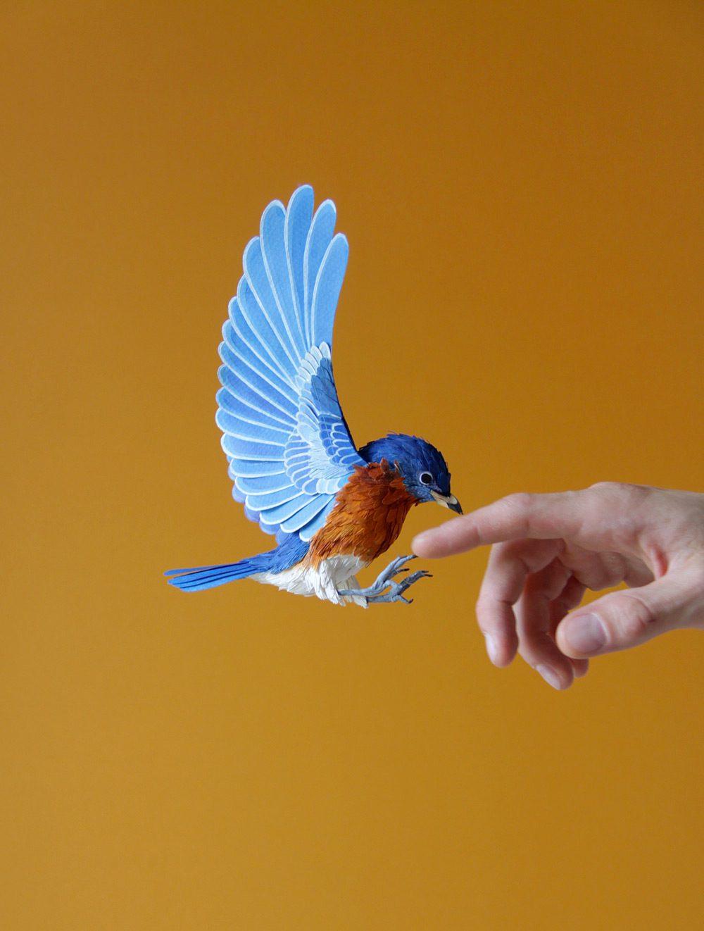 Extraordinary Bird Paper Cut Sculptures By Colombian Artist And Designer Diana Beltran Herrera 6