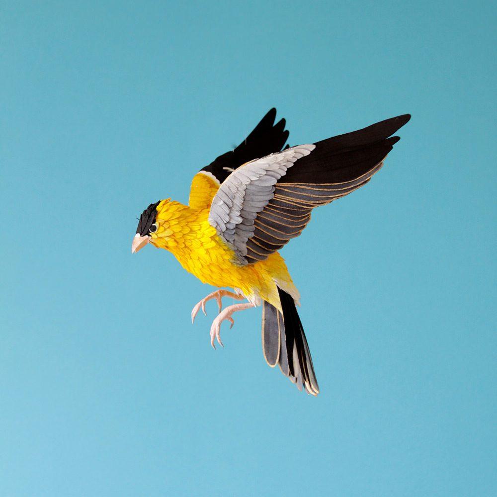 Extraordinary Bird Paper Cut Sculptures By Colombian Artist And Designer Diana Beltran Herrera 7