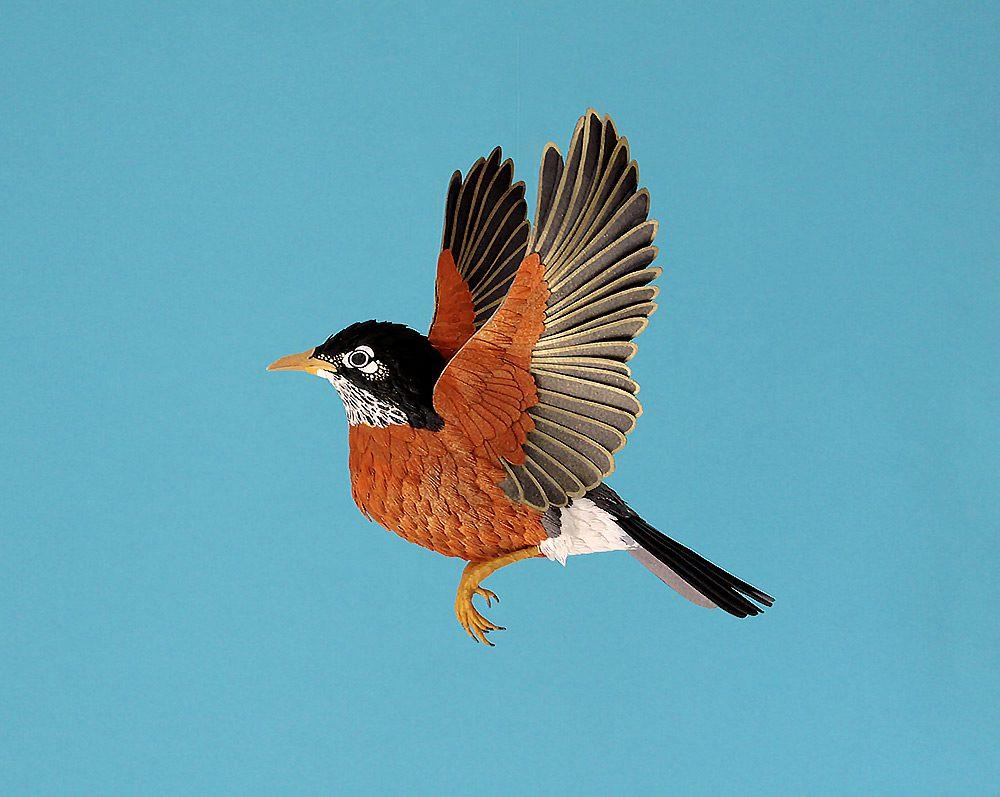 Extraordinary Bird Paper Cut Sculptures By Colombian Artist And Designer Diana Beltran Herrera 8