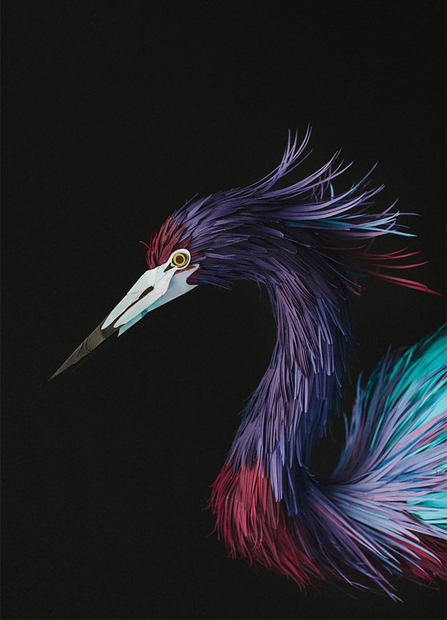 Extraordinary Bird Paper Cut Sculptures By Colombian Artist And Designer Diana Beltran Herrera 9