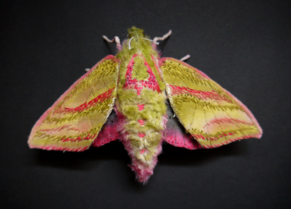Textile Sculptures Of Moths Butterflies And Other Insects Made With Fabric And Embroidery By Yumi Okita 33
