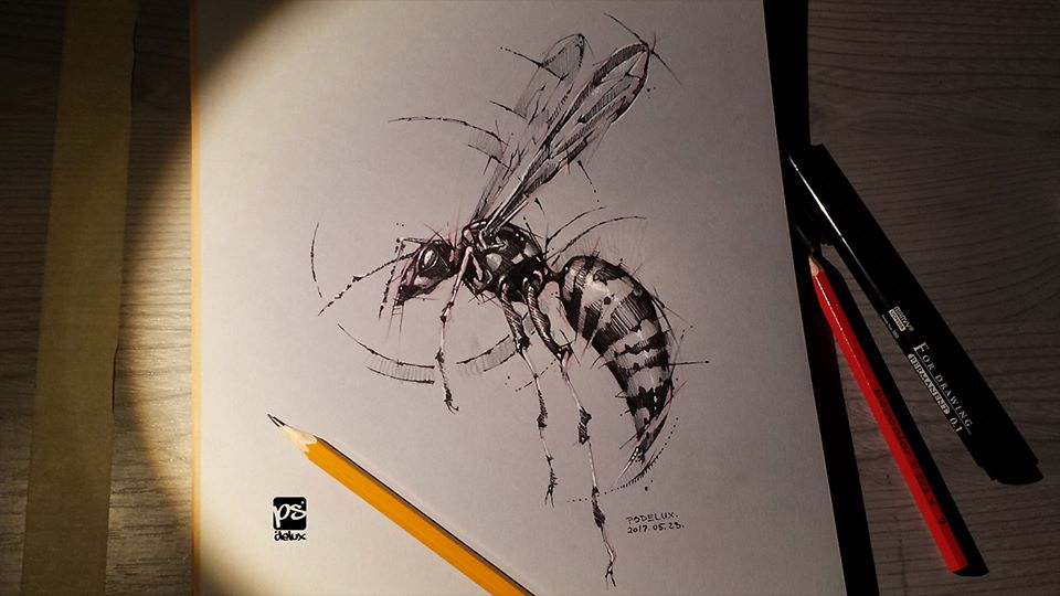 Marvelous Drawings And Sketches Made By A Mysterious Hungarian Artist 3