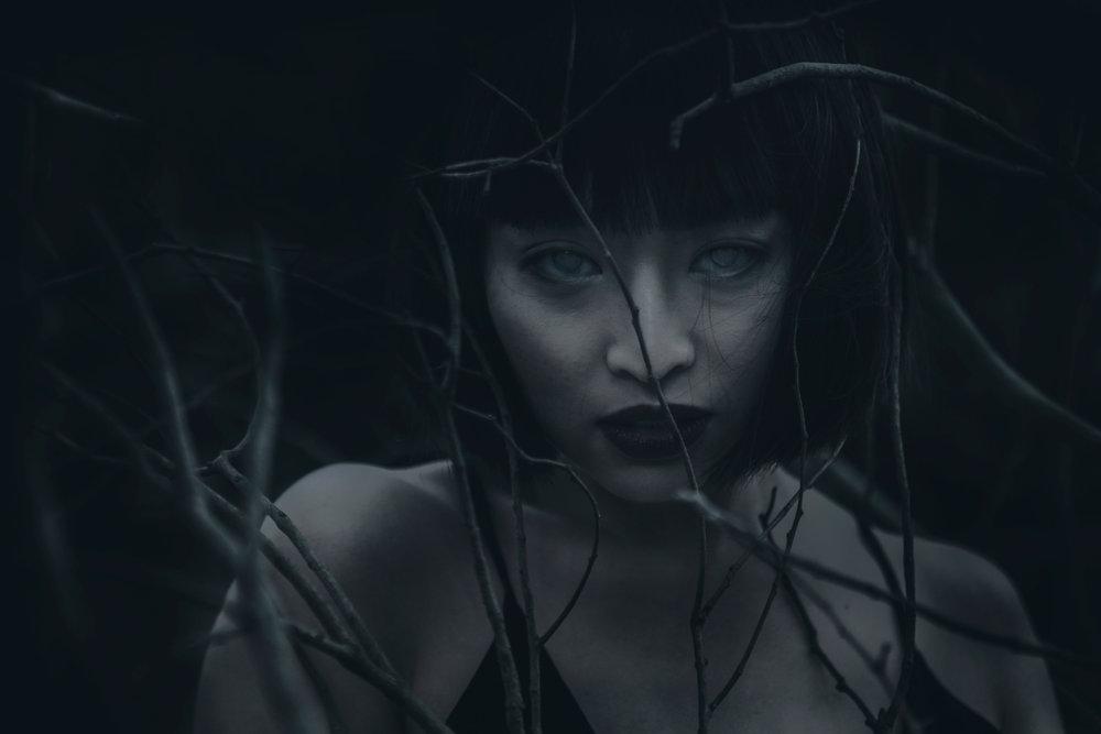 The Dark And Arcane Photography Of Karina Boissonnier 2
