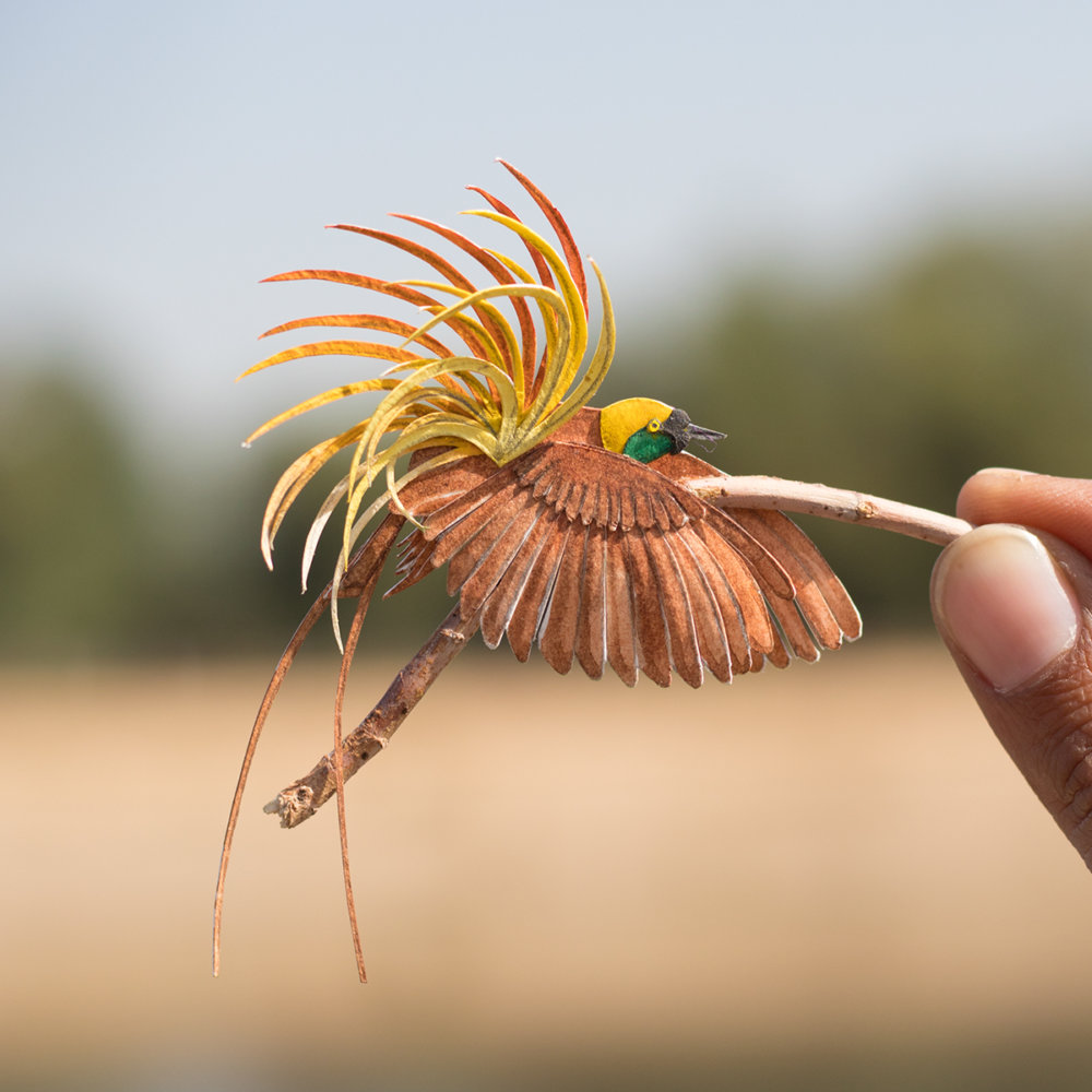 Awesome Bird Paper Cut Sculptures In Miniature By Vaishali Chudasama 10