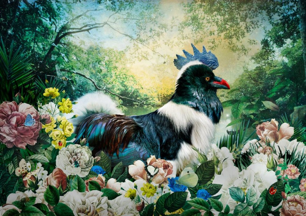 The Day I Visited Eden Gorgeous Collages Of Cross Breed Creatures By Andre Sanchez 7