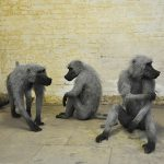 Incredible animal galvanized wire mesh sculptures by Kendra Haste