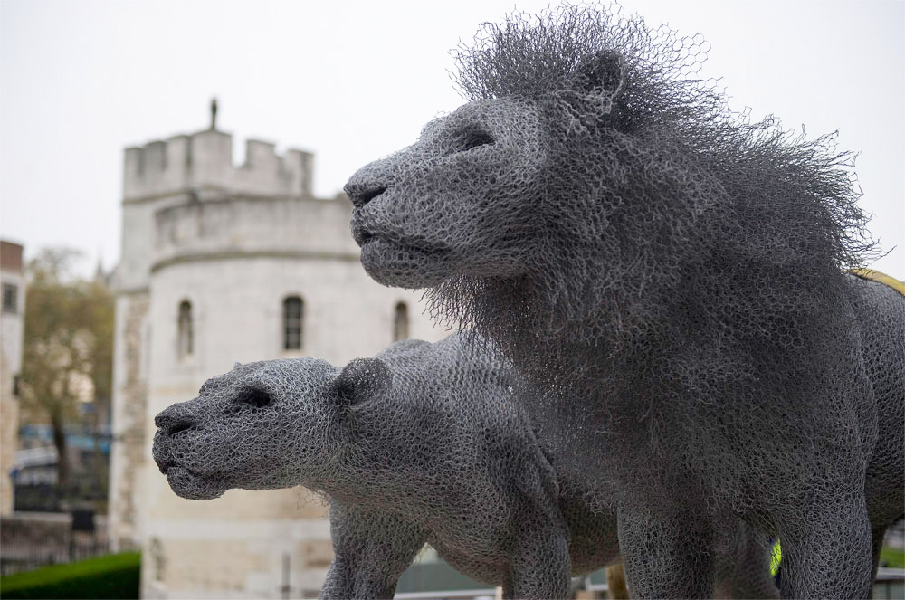 Animal Galvanized Wire Mesh Sculptures By Kendra Haste 9