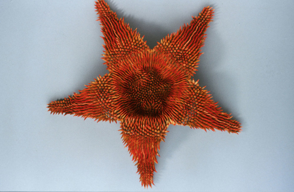 Kinesthetic Sculptures Made Out Of Colored Pencils By Jennifer Maestre 1