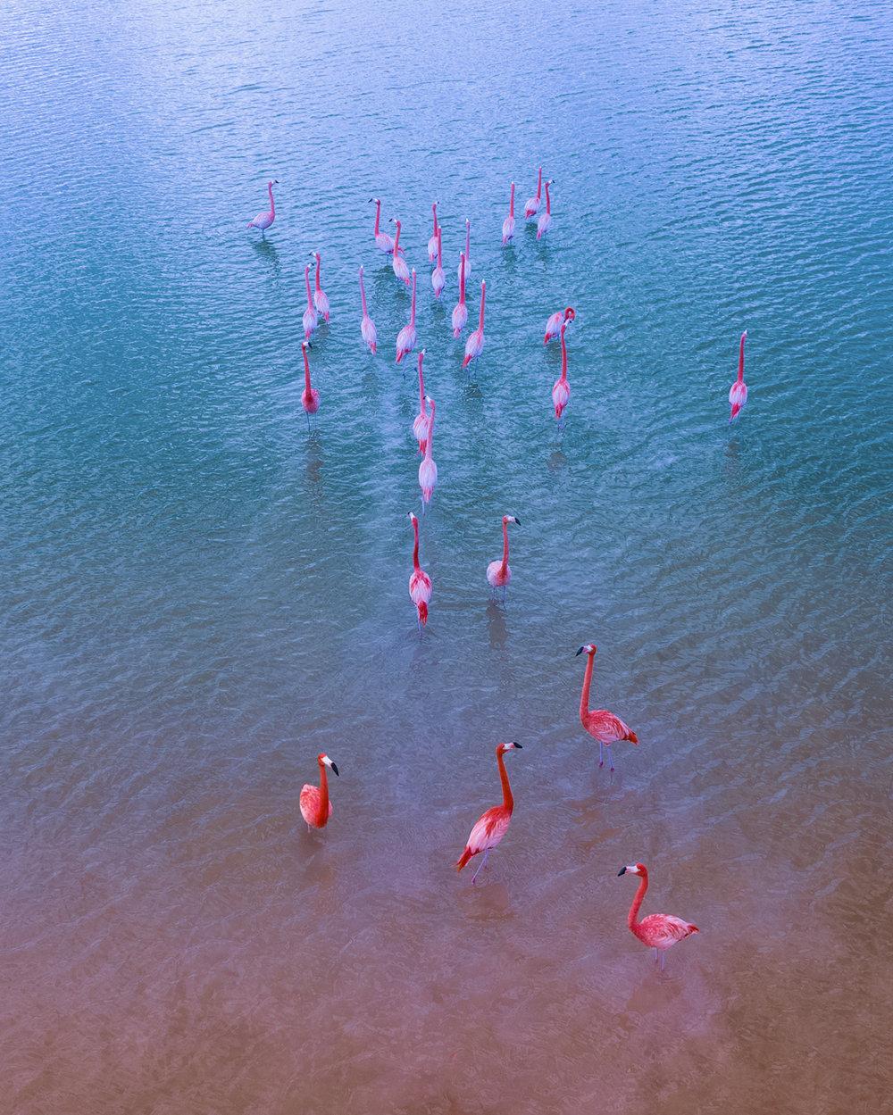 Mexico From Above Aerial Photography Series By Dimitar Karanikolov 7