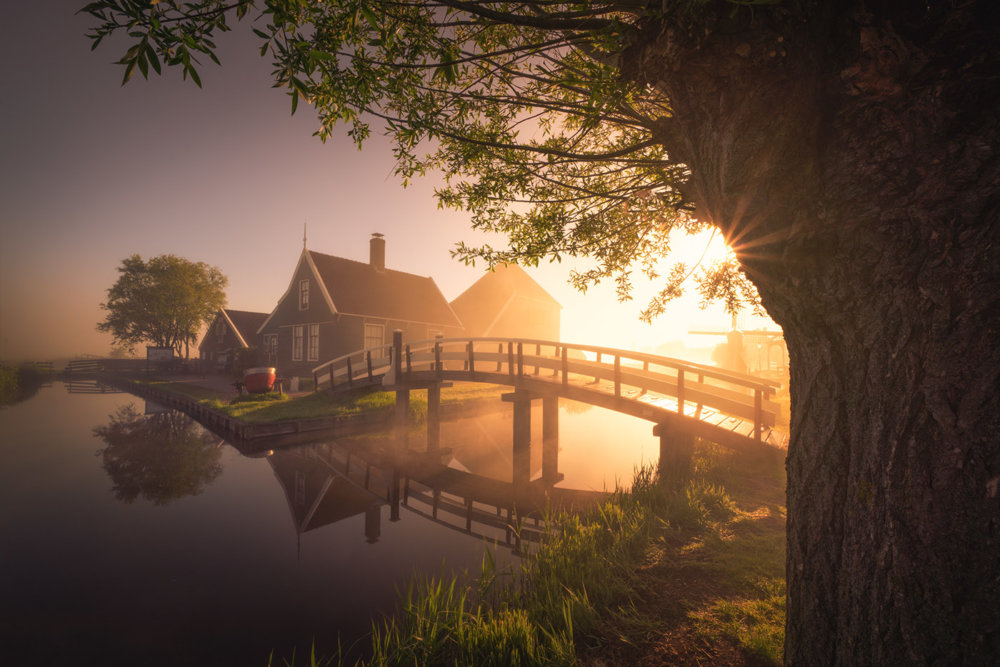 Magic Windmills Enchanting Dutch Landscapes In The Fog By Albert Dros 1