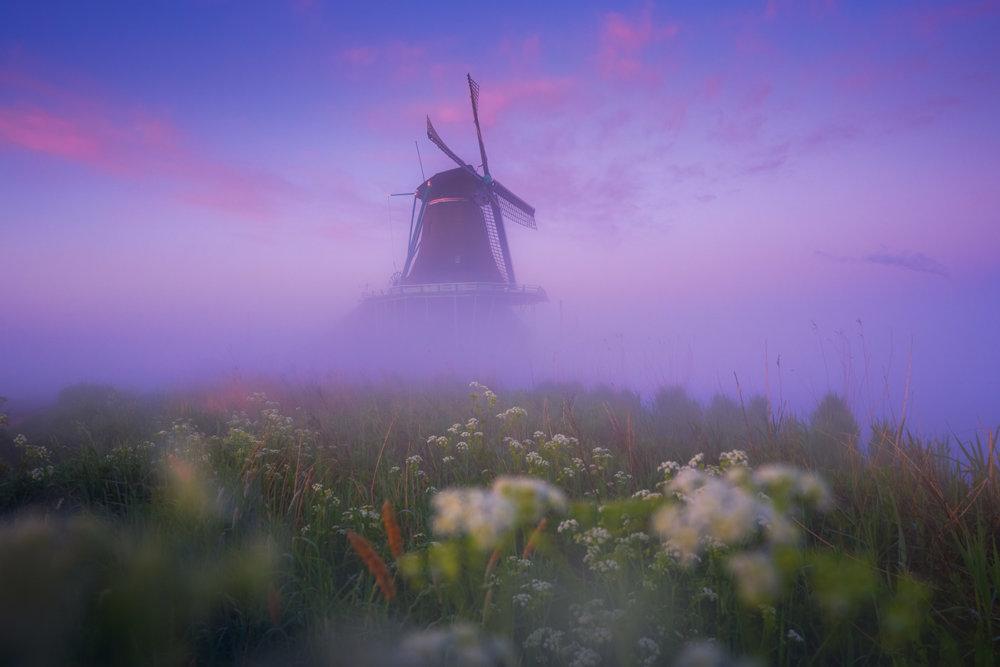 Magic Windmills Enchanting Dutch Landscapes In The Fog By Albert Dros 2