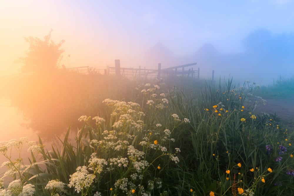 Magic Windmills Enchanting Dutch Landscapes In The Fog By Albert Dros 3
