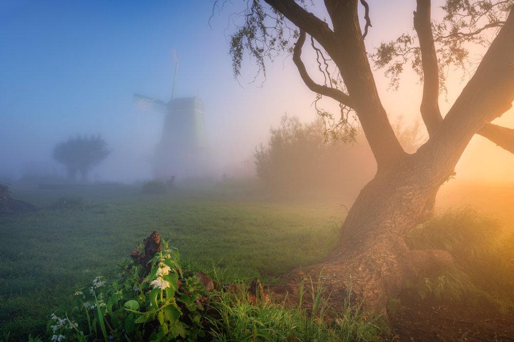 Magic Windmills Enchanting Dutch Landscapes In The Fog By Albert Dros 9