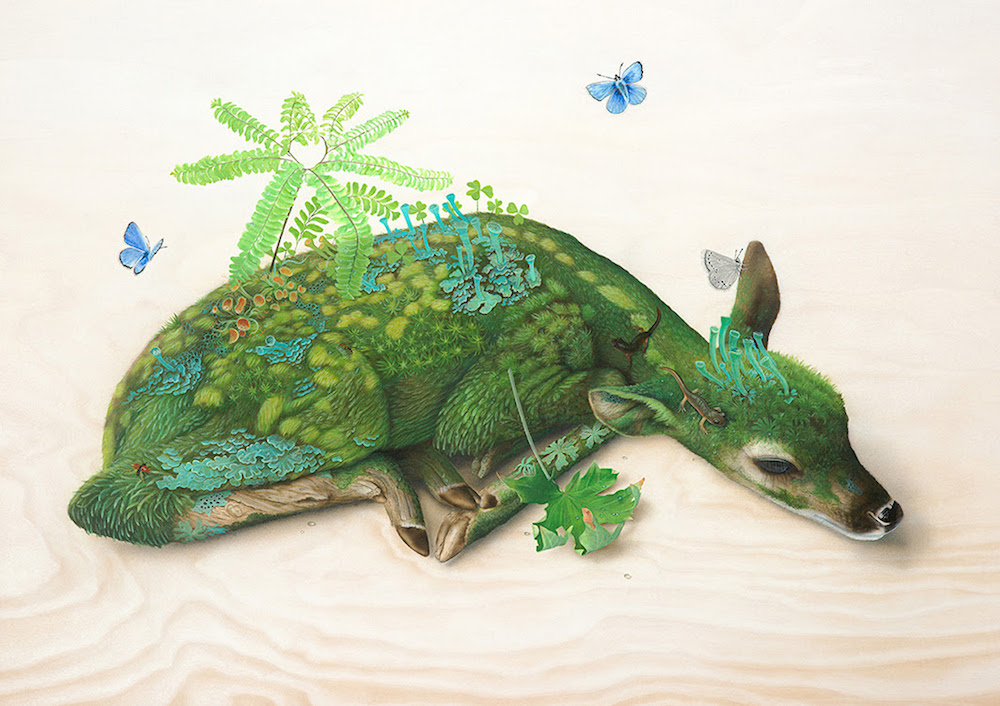 Surreal Wildlife Paintings By Tiffany Bozic 2