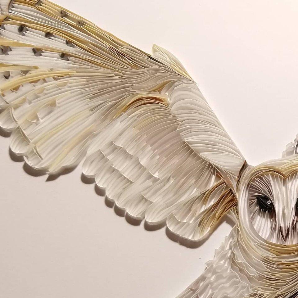 Wonderful Animal Paper Quilling Illustrations By Rebekah Jenkins 4