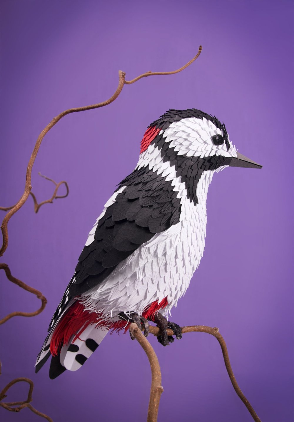 Animal Sculptures Meticulously Made Of Thousands Of Paper Pieces By Lisa Lloyd 5