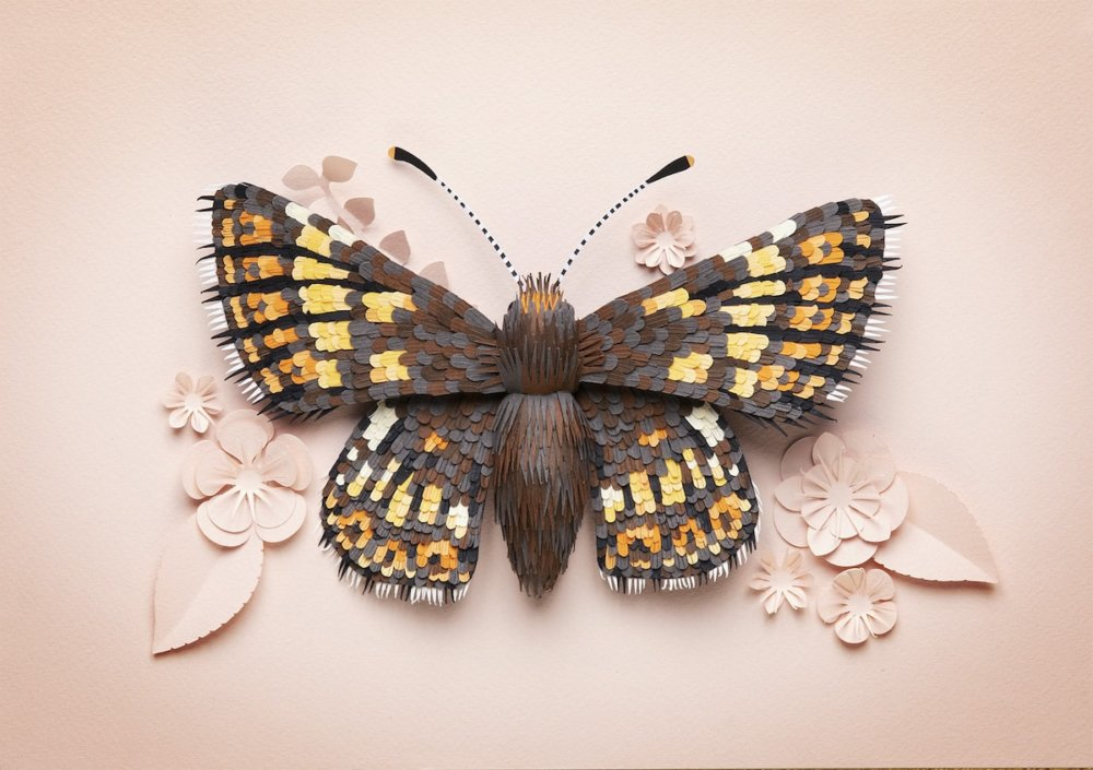 Animal Sculptures Meticulously Made Of Thousands Of Paper Pieces By Lisa Lloyd 6