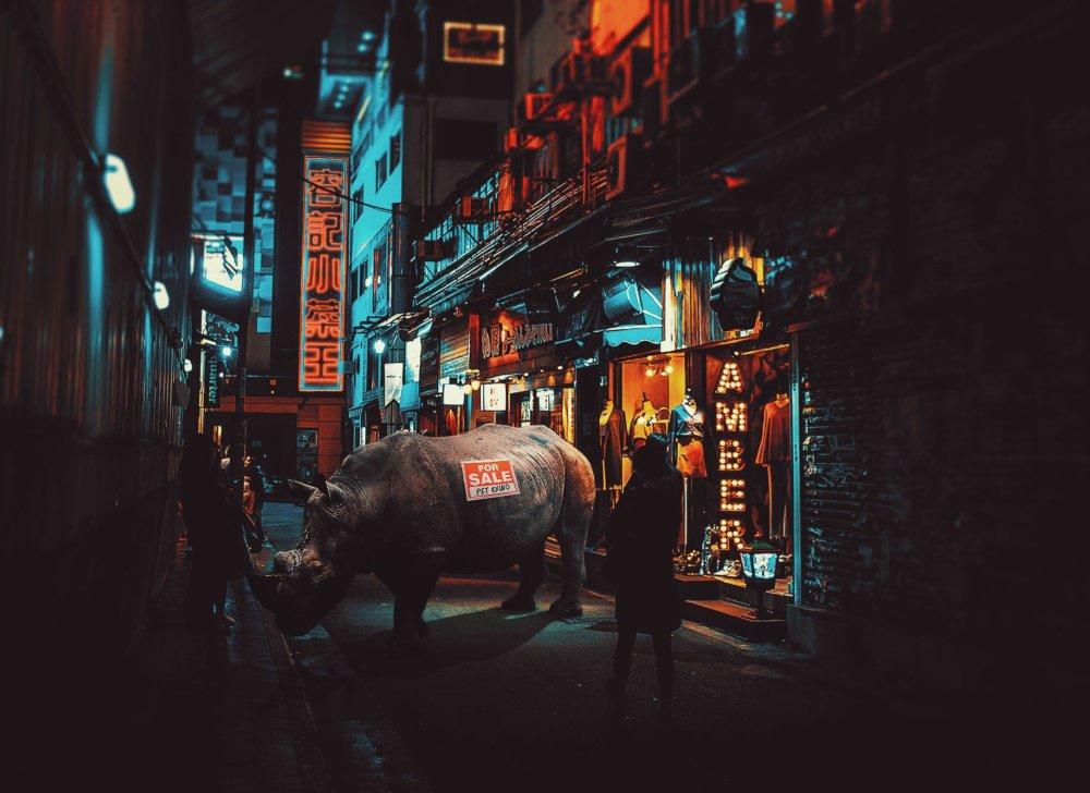 Cyberpunk Scenarios Of Wild Animals Roaming Around Nightly Cityscapes By Carlos Jimenez Varela 2
