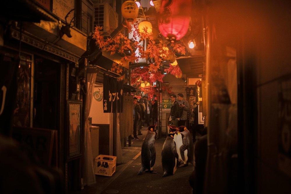 Cyberpunk Scenarios Of Wild Animals Roaming Around Nightly Cityscapes By Carlos Jimenez Varela 3