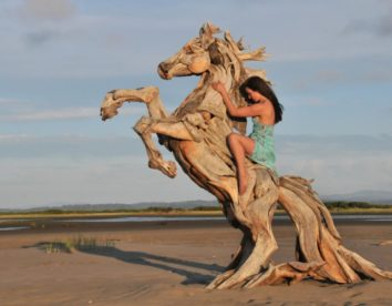 Extraordinary sculptures and rustic furniture carved out of driftwood by Jeffro Uitto