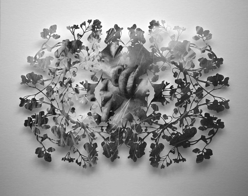 Fragmented Feelings Illustrated Papercut Works By Christine Kim 9