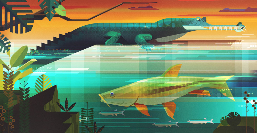 Gorgeous Editorial Illustrations Of Endangered Animals For The Book Saving Species By James Gilleard 10