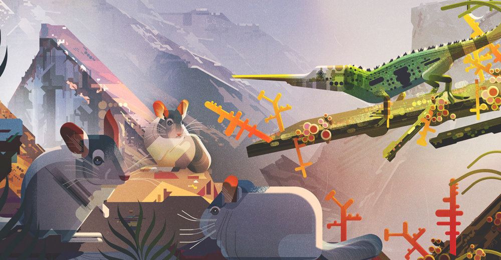 Gorgeous Editorial Illustrations Of Endangered Animals For The Book Saving Species By James Gilleard 8
