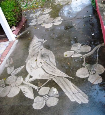 Gorgeous figures 'painted' with a power washer on dirty driveways by Dianna Wood