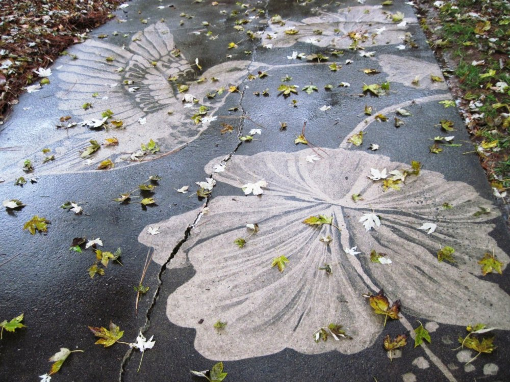 Gorgeous Figures Painted With A Power Washer On Dirty Driveways By Dianna Wood 4
