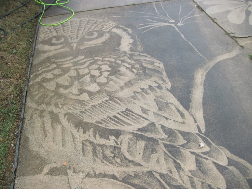 Gorgeous Figures Painted With A Power Washer On Dirty Driveways By Dianna Wood 6