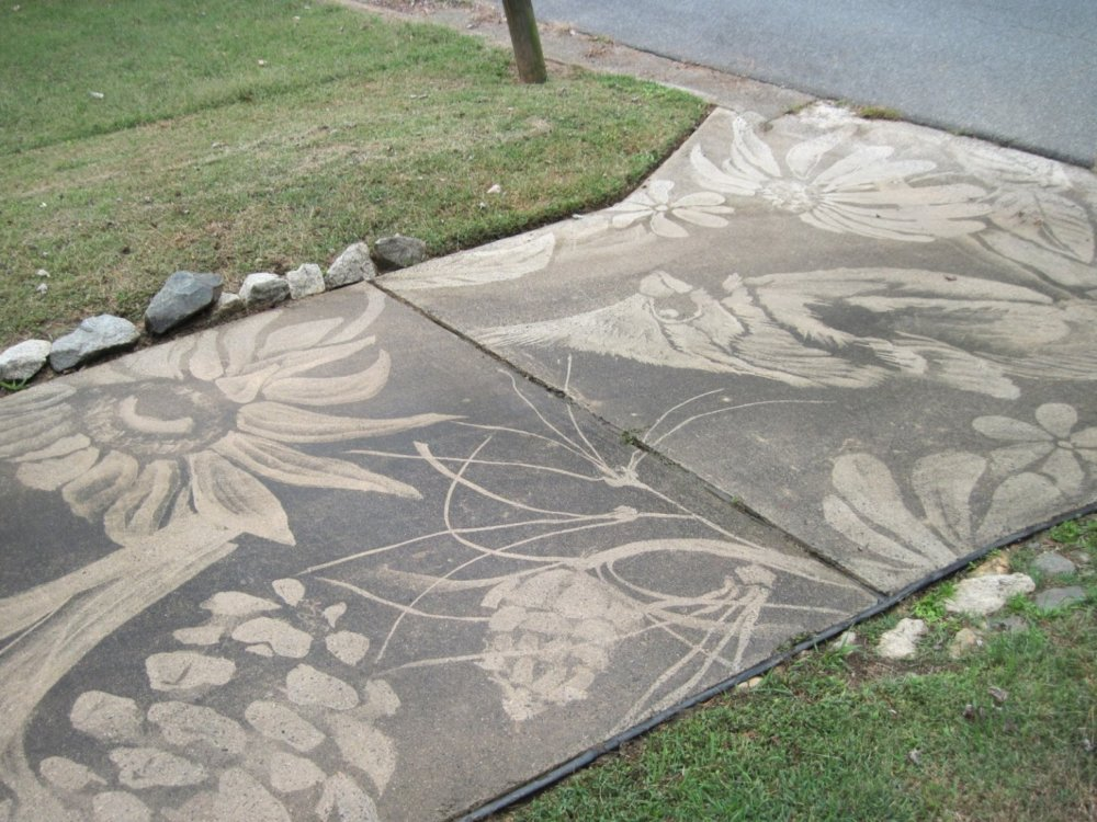 Gorgeous Figures Painted With A Power Washer On Dirty Driveways By Dianna Wood 7