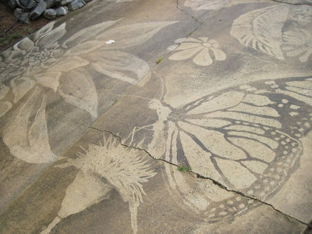 Gorgeous Figures Painted With A Power Washer On Dirty Driveways By Dianna Wood 8
