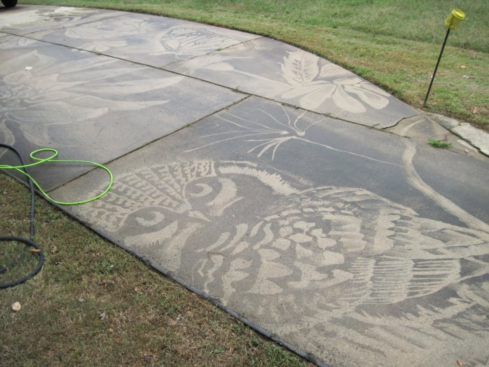 Gorgeous Figures Painted With A Power Washer On Dirty Driveways By Dianna Wood 9
