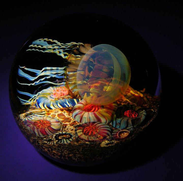 Gorgeous Glass Jellyfish Sculptures By Richard Satava 8