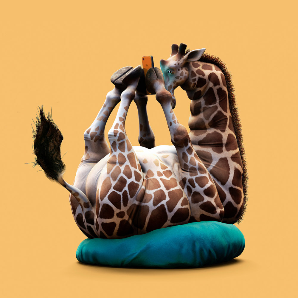 Lazy Things Funny Series Of Animals Immersed In Technology By Guodong Zhao 1