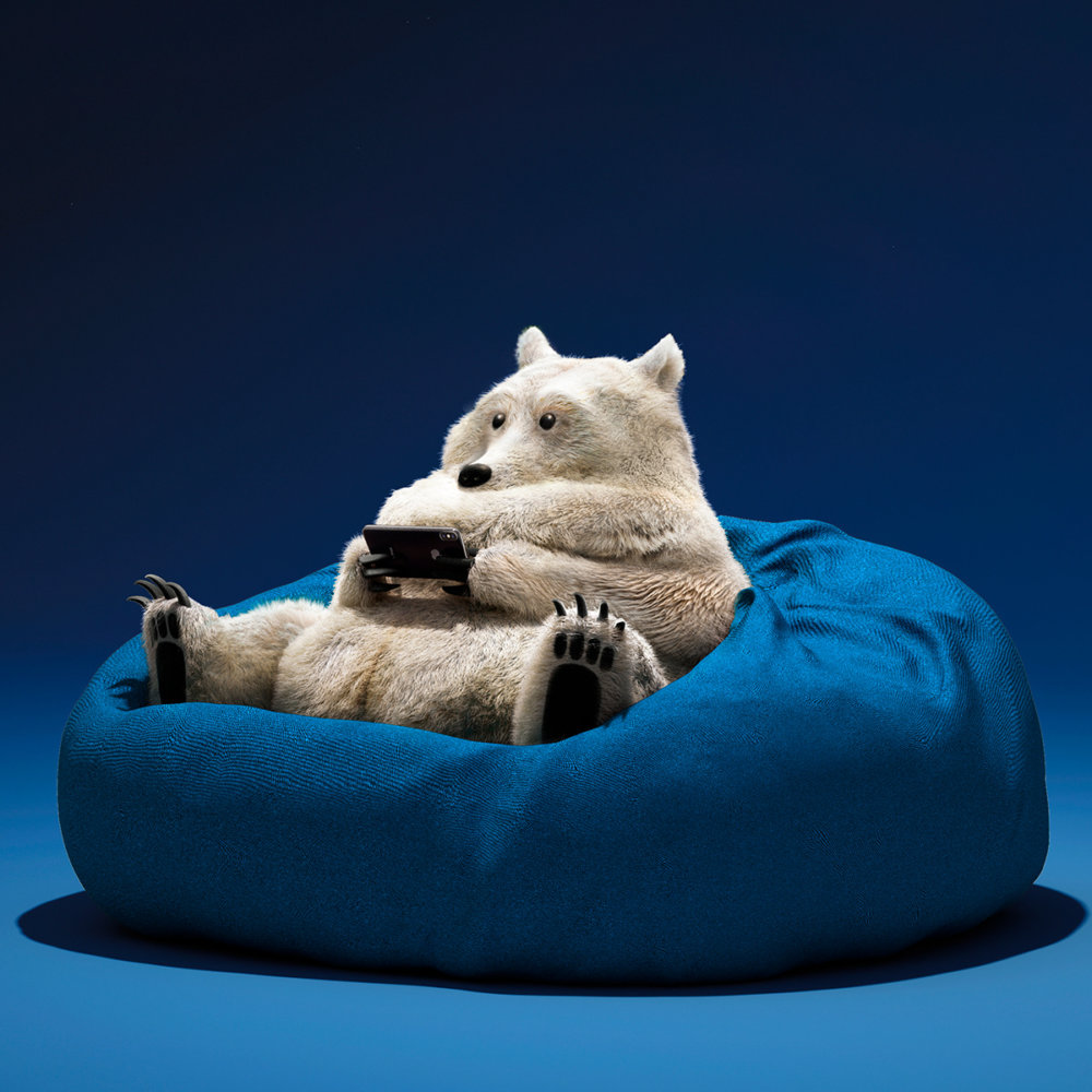 Lazy Things Funny Series Of Animals Immersed In Technology By Guodong Zhao 10