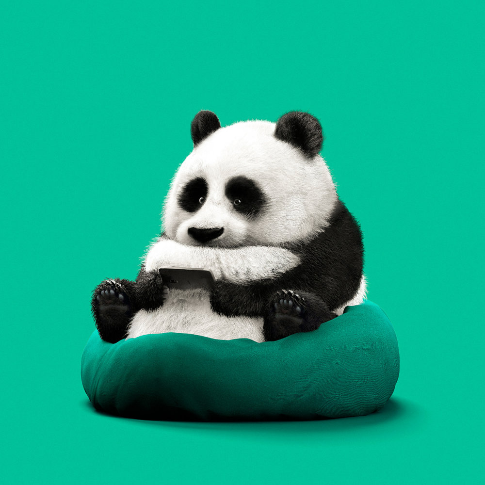 Lazy Things Funny Series Of Animals Immersed In Technology By Guodong Zhao 3