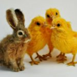 Cute needle-felted animal sculptures in miniature by Daria Lvovsky