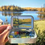 Superb mini plein air paintings in Altoids tins by Remington Robinson