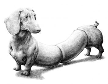 Surreal black and white animal illustrations by Redmer Hoekstra