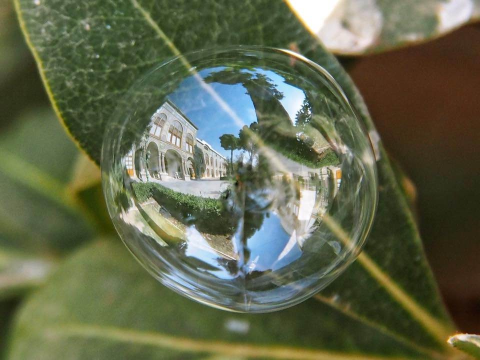 The World From The Point Of View Of Soap Bubbles By Khaled Youssef 2