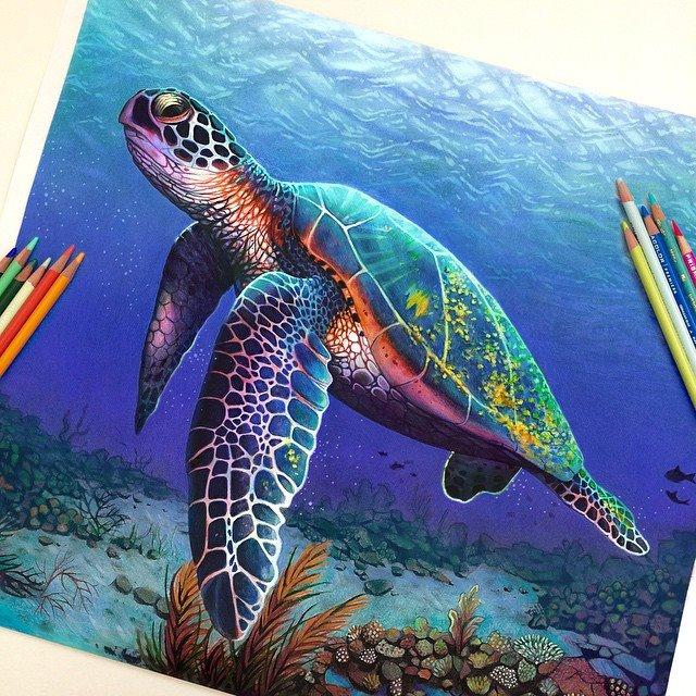 Vibrant Pencil Drawings By Morgan Davidson 7