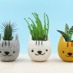 Cute animal-themed succulent planters by Stella Melgrati