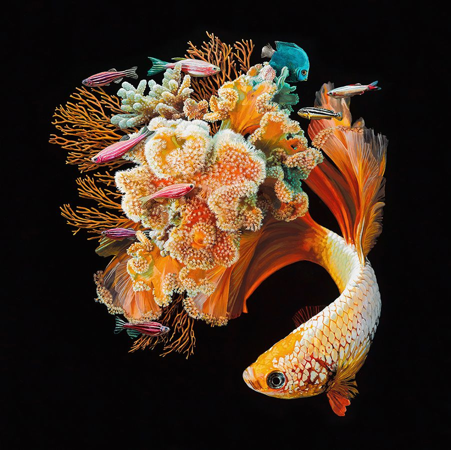 Fish And Coral Reefs Twisted Into The Lush Acrylic Paintings Of Lisa Ericson 2