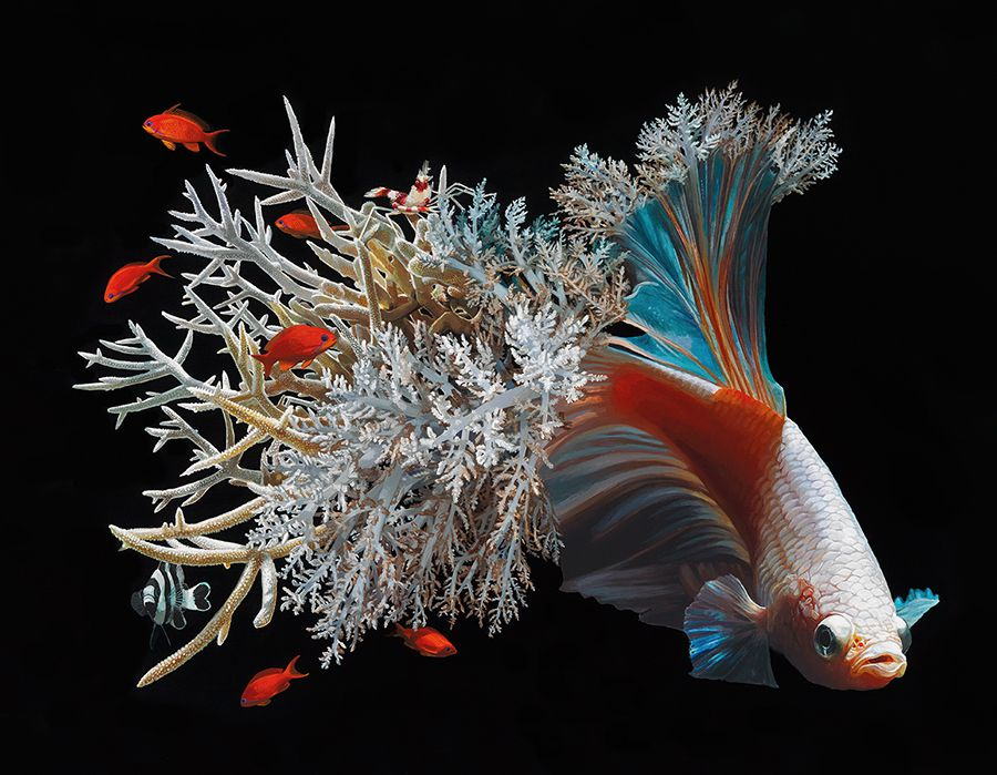 Fish And Coral Reefs Twisted Into The Lush Acrylic Paintings Of Lisa Ericson 4