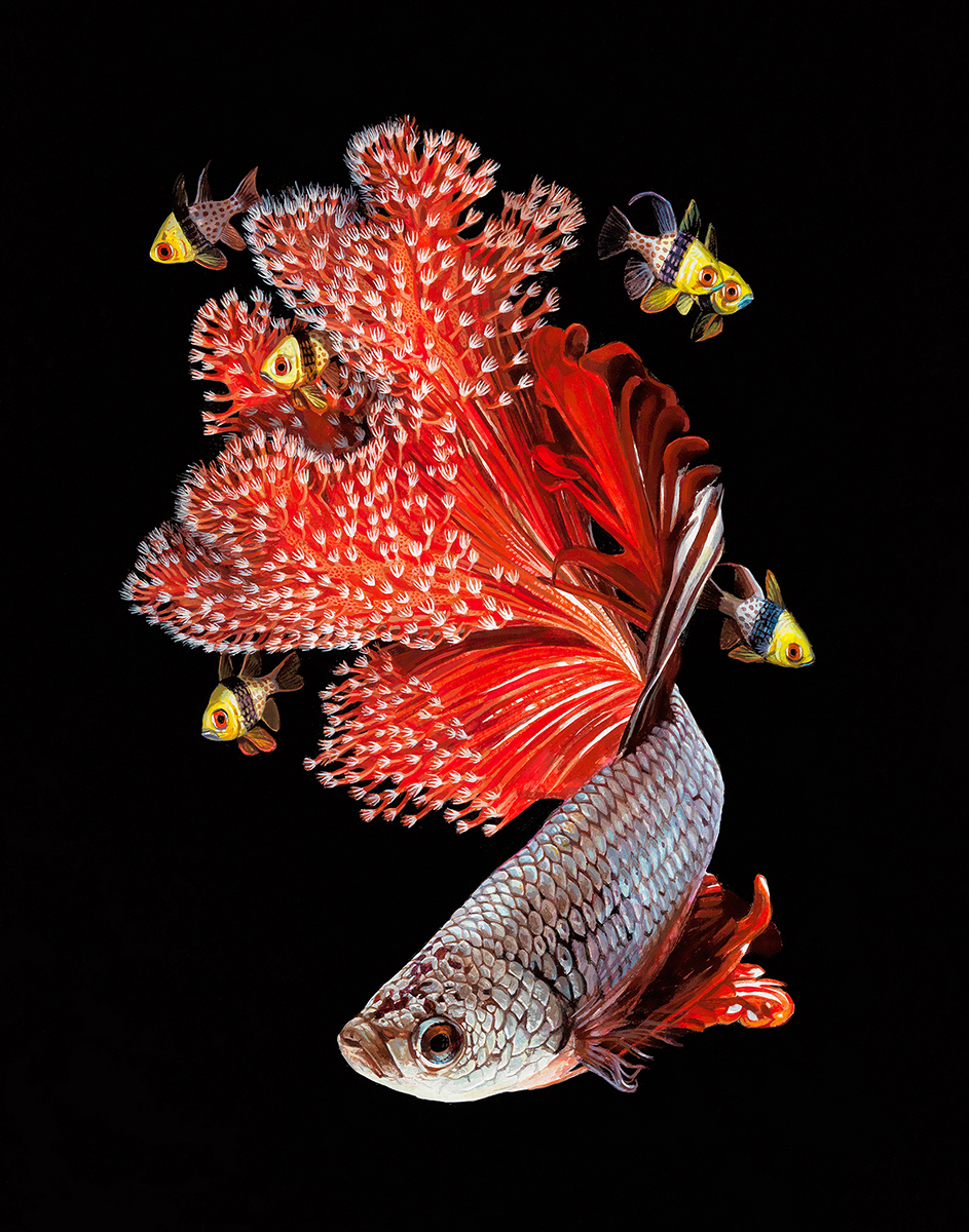 Fish And Coral Reefs Twisted Into The Lush Acrylic Paintings Of Lisa Ericson 5