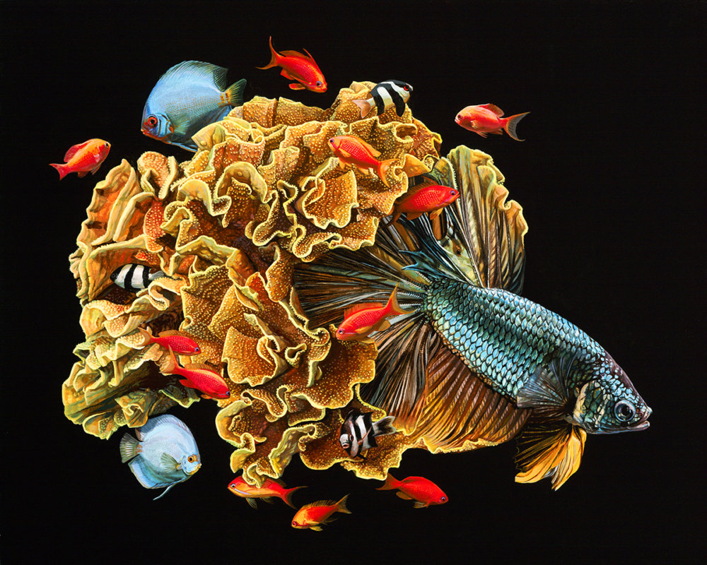 Fish And Coral Reefs Twisted Into The Lush Acrylic Paintings Of Lisa Ericson 6