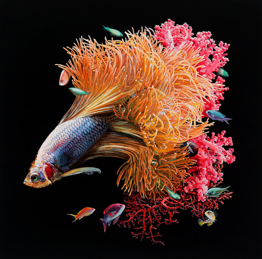 Fish And Coral Reefs Twisted Into The Lush Acrylic Paintings Of Lisa Ericson 7