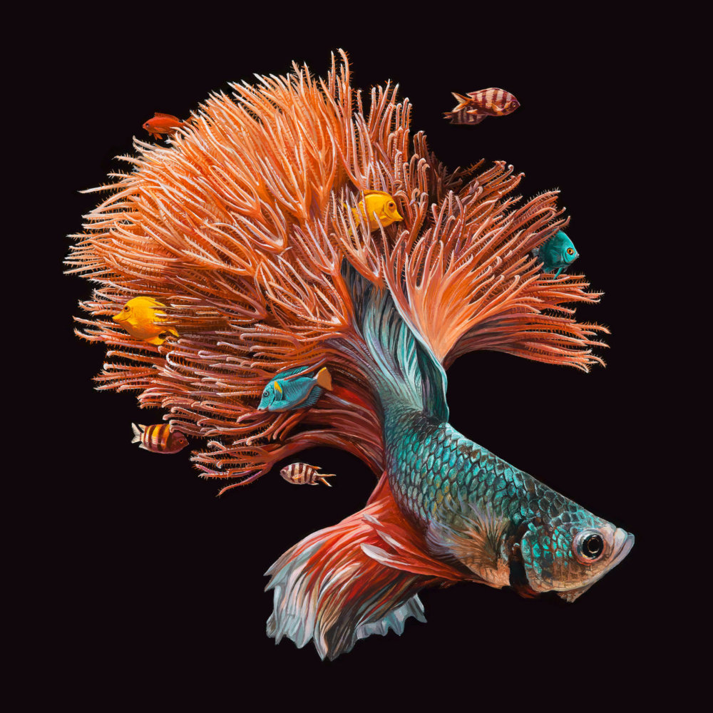 Fish And Coral Reefs Twisted Into The Lush Acrylic Paintings Of Lisa Ericson 8